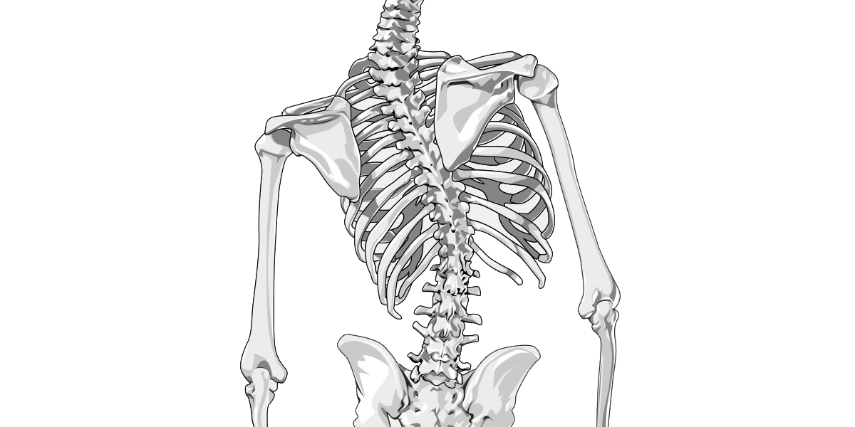 Scoliosis_Featured_Image1